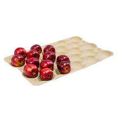 Molded Fiber Fruit Trays